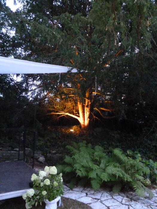 Garten, VILLA WEISS, Hotel Garni mit Musikworkshops