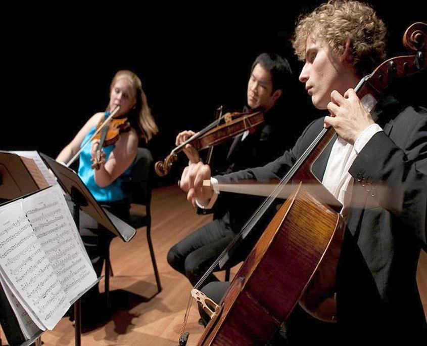 Kammermusik plus Feldenkrais für Streicher, Musikkurs VILLA WEISS