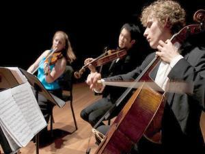 Kammermusik plus Feldenkrais - Ein Musikkurs für Streicher in der VILLA WEISS
